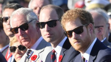 Photo of Prince Charles has no plans to see son Harry when he returns to UK: report.