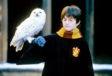 Photo of Daniel Radcliffe shares which 'Harry Potter' role he'd want in a reboot.